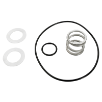 Pentair 149620035 - Spring and O-Ring Kit