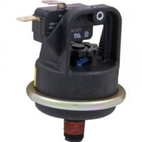 Pentair 420010060S - Pressure Switch