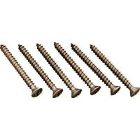 Hayward AXV057P - Middle Body Screw (Pack of 6)
