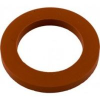 Pentair 70951 - Gasket Tube Seal