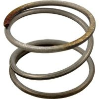 Pentair 178616 - Clean & Clear Plus Compression Spring