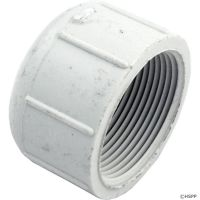 Pentair 154871 - 1.5 inch Threaded Cap