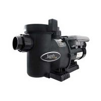 Jandy Flo Pro Variable Speed Pump without Controller (1.65 HP)