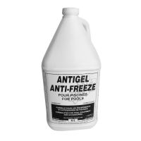 Antigel Swimming Pool Anti-Freeze (4 L)