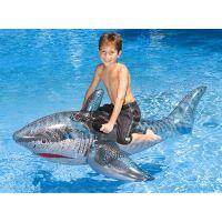 Shark 72