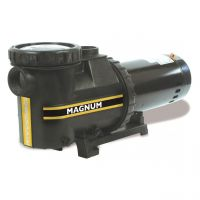 Carvin 2 Hp Inground Magnum Pump