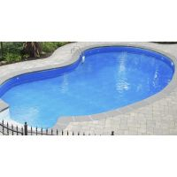 16 X 33 ft Kidney Inground Pool Complete Package